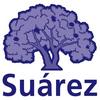 Suarez-spaansetaal.com